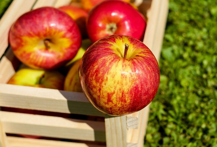 trucos para almacenar alimentos