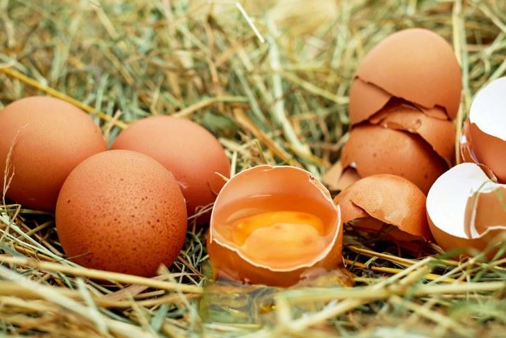 color yema huevo