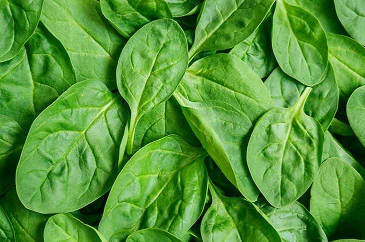 hojas espinacas: tejido corazón