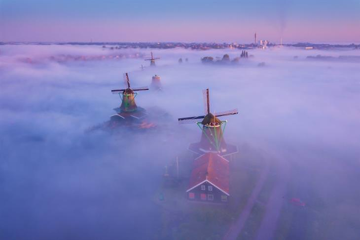 fotos molinos holandeses nieble