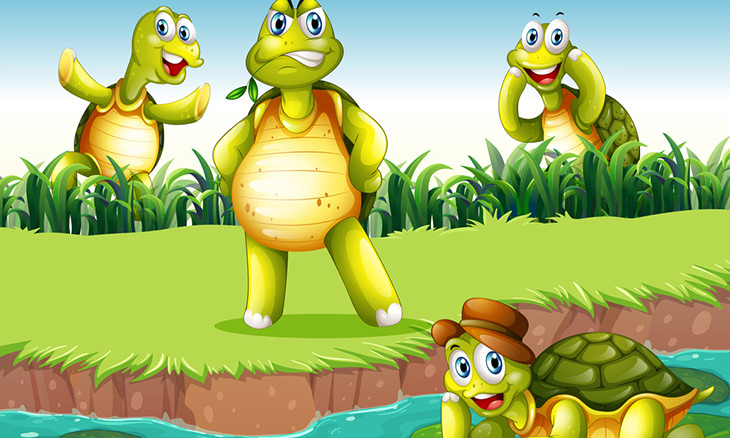 historia tortugas