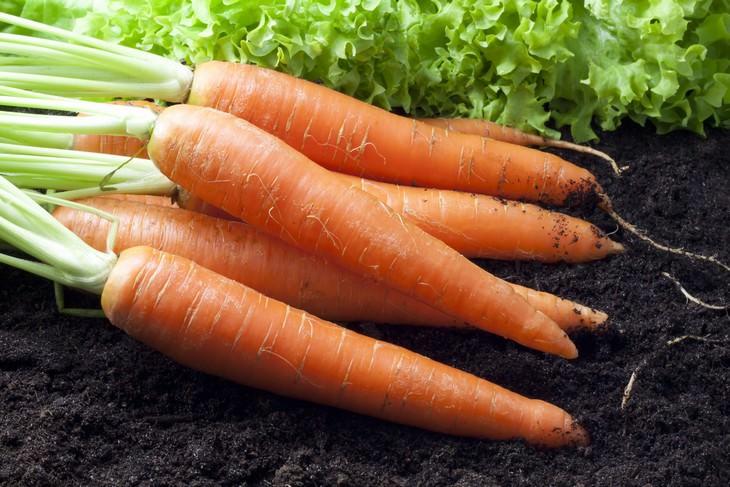 12 alimentos para mantenerte joven