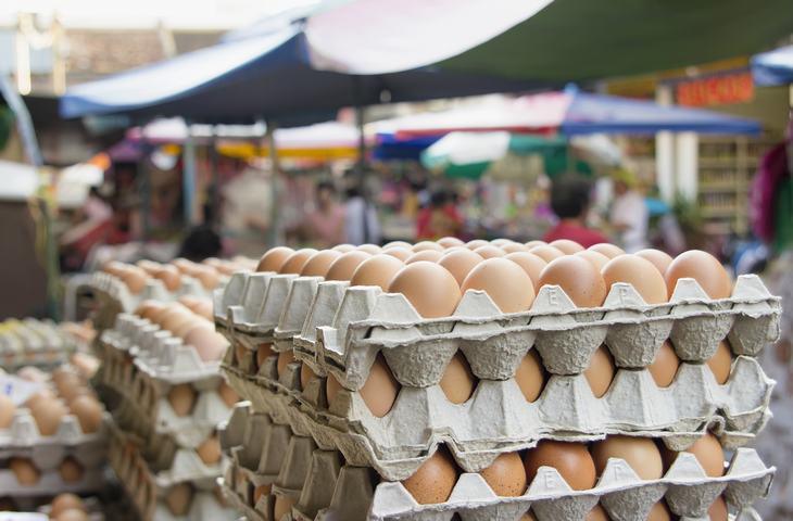 historia huevos