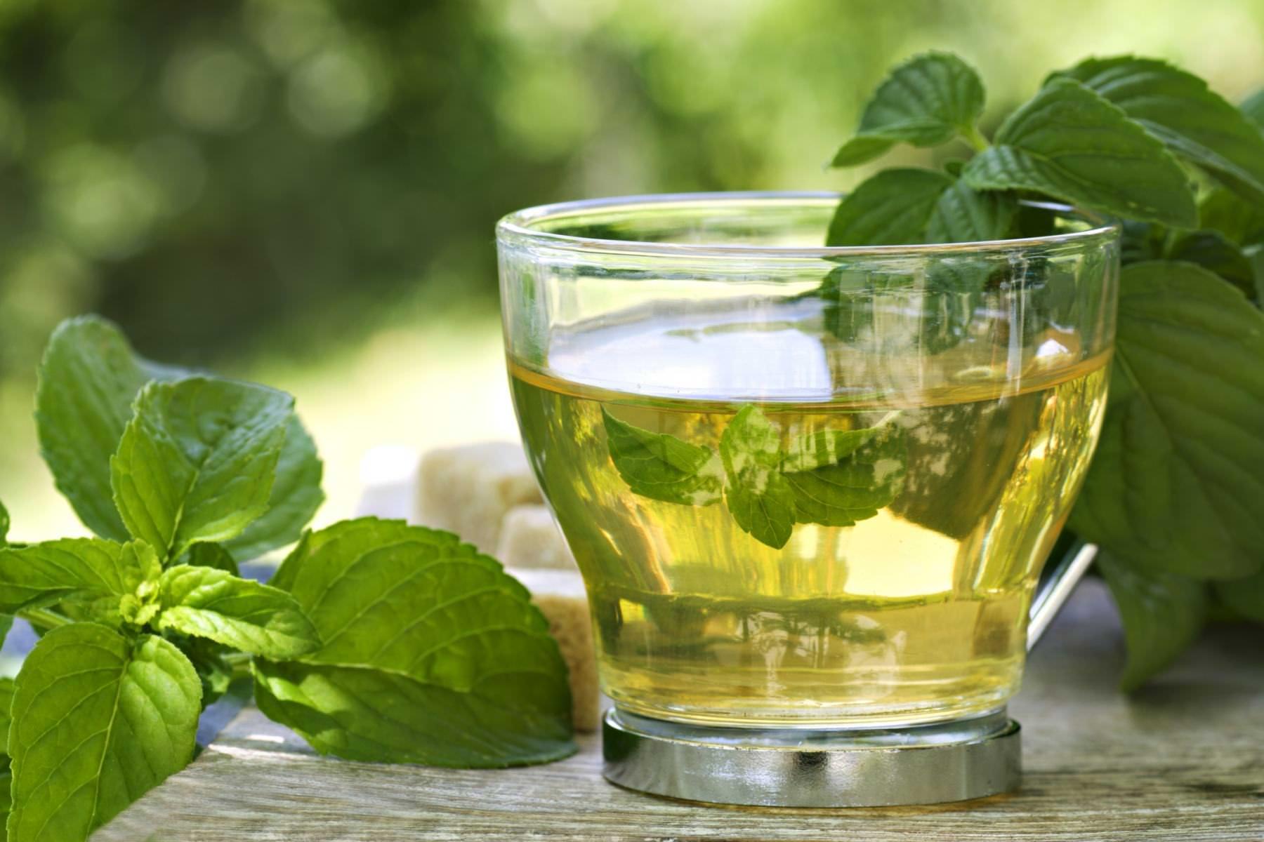 el té verde causa micción más frecuente