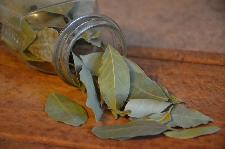 beneficios hojas de laurel