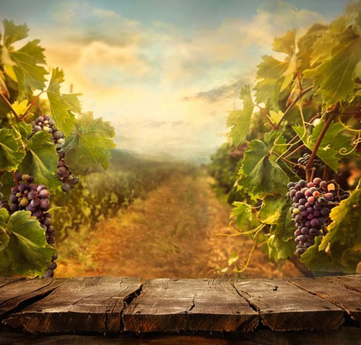 beneficios vino