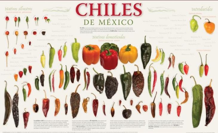 Chiles valores nutritivos