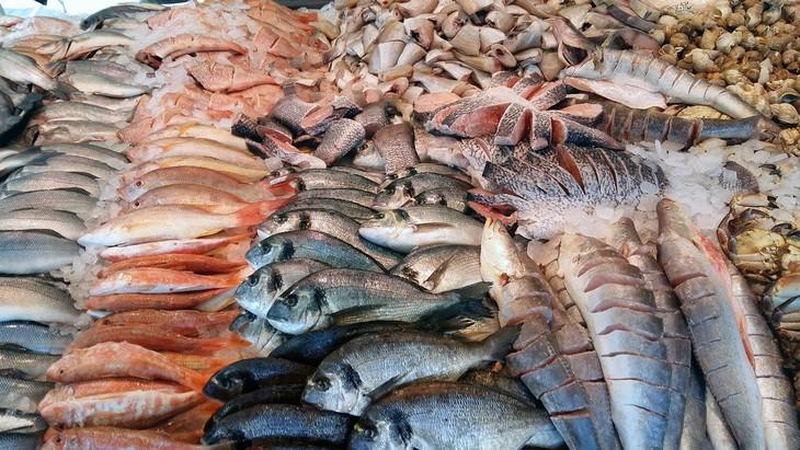 tipos de pescados y como cocinar
