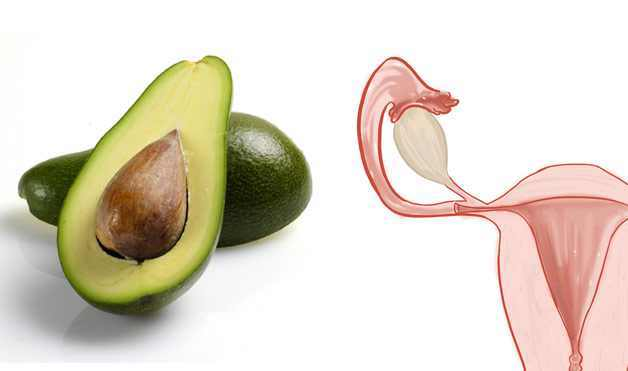 alimentos parecidos al órgano que benefician