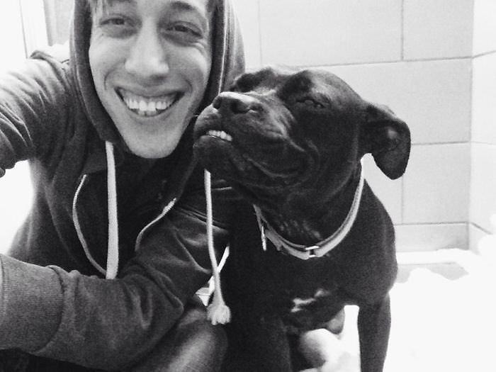 ¡Déjate Alegrar Por Estos Canes Con La Mejor Sonrisa!