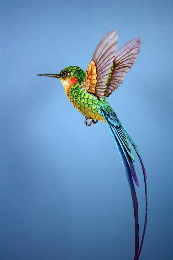 Aves arte