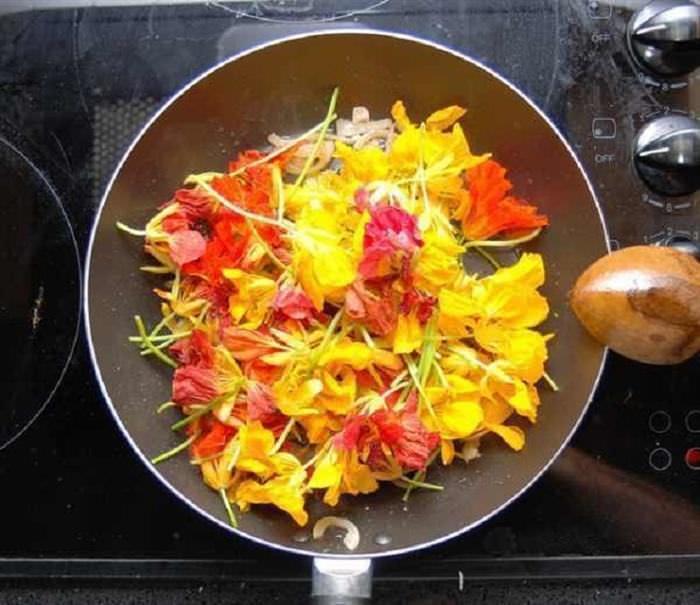Cocina floral