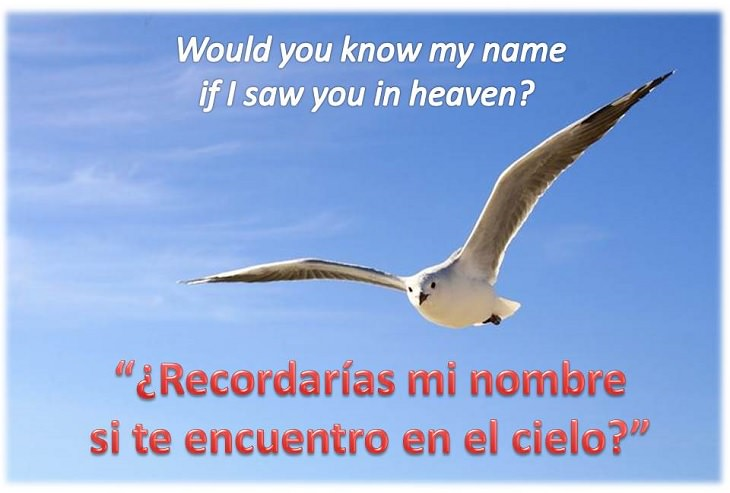 E Clapton Lágrimas En El Cielo O Tears In Heaven