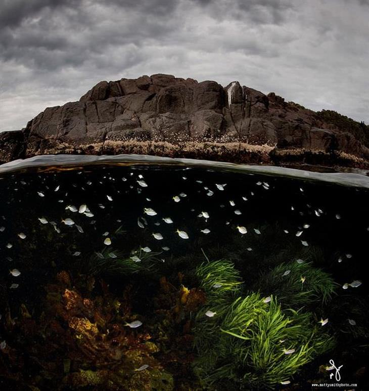 fotos debajo del mar