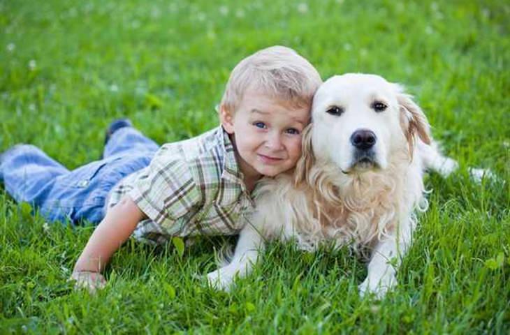 Estudio: Los Perros Reaccionan Positivamente Cuando Les Dices Que Los Amas Niño y su perro