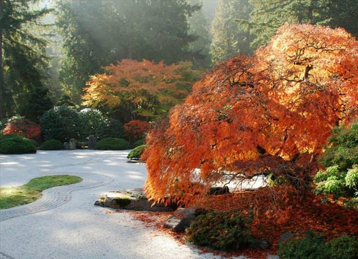 20 jardines japoneses