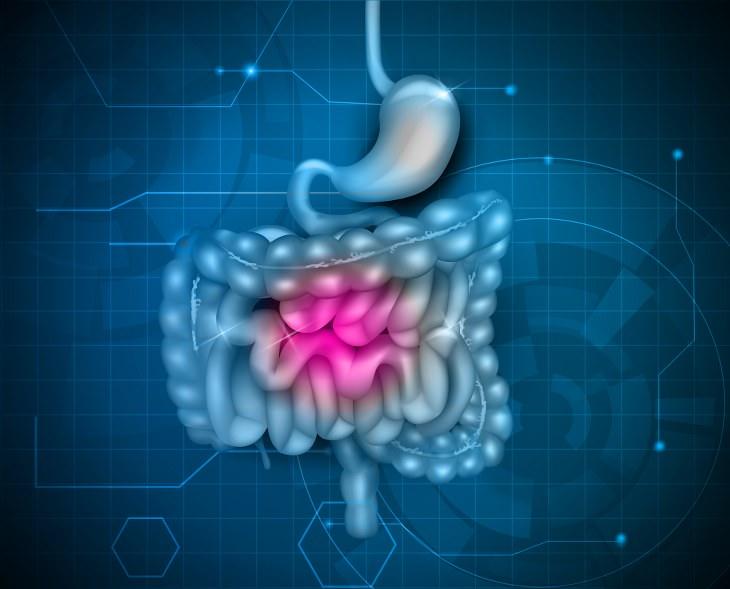 la verdad sobre los  Probióticos
