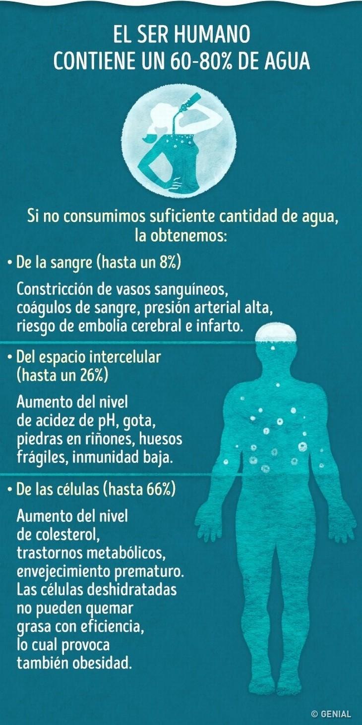 infografía deshidratación