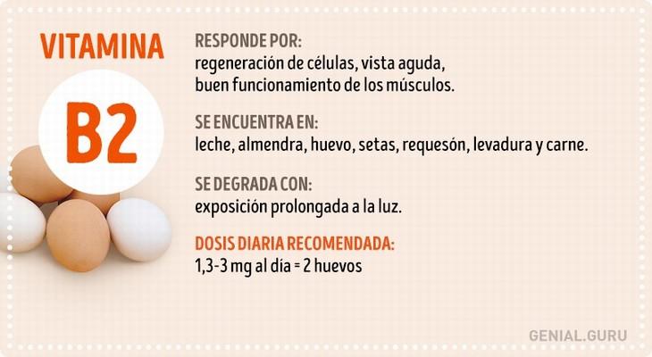 guia vitaminas infografia