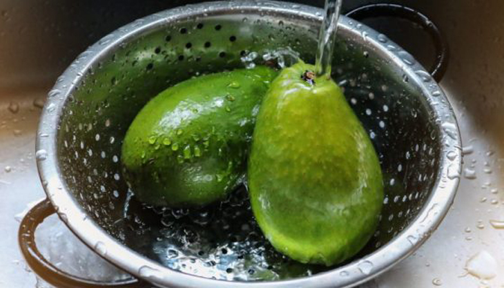 11 tips aguacates