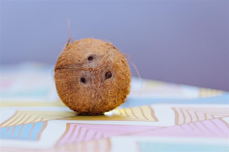 frutas engordan coco