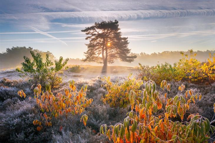 Imágenes Gloriosas De La Naturaleza