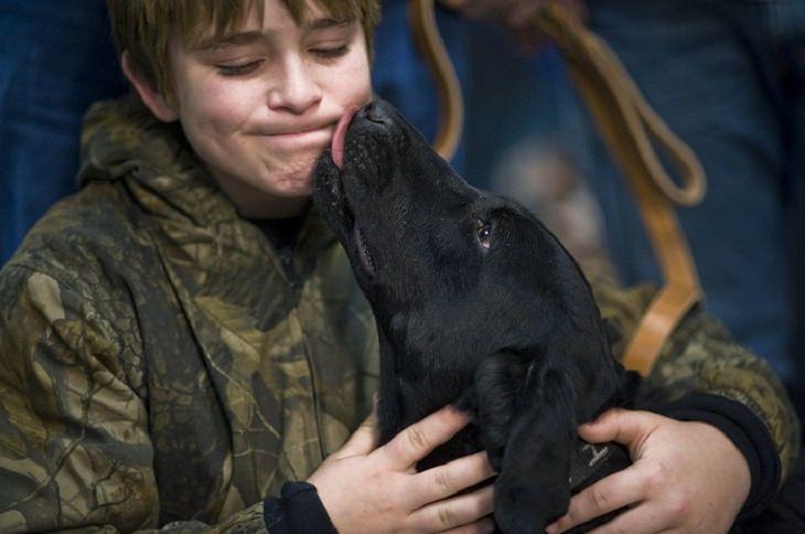 12 hechos tu perro te conocer mejor de lo crees