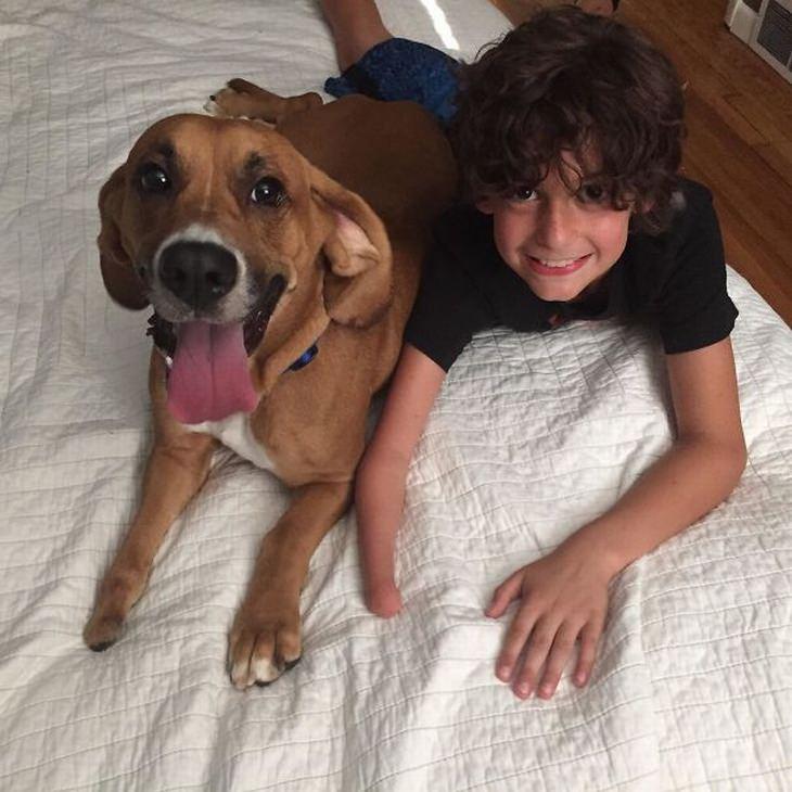 17 fotos de niños con perros