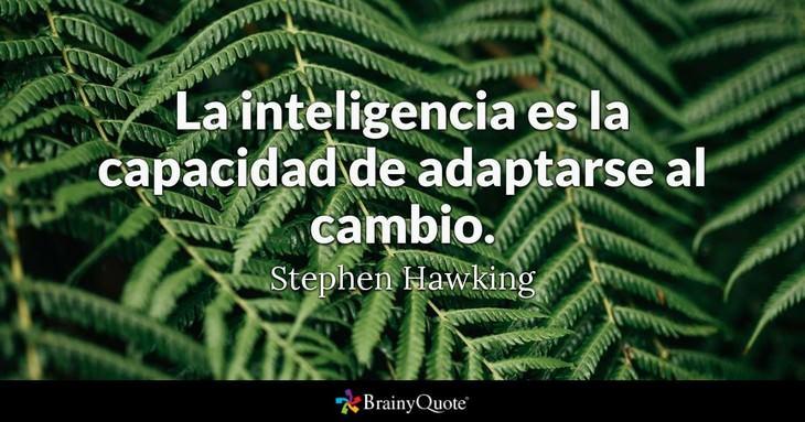frases Stephen Hawking