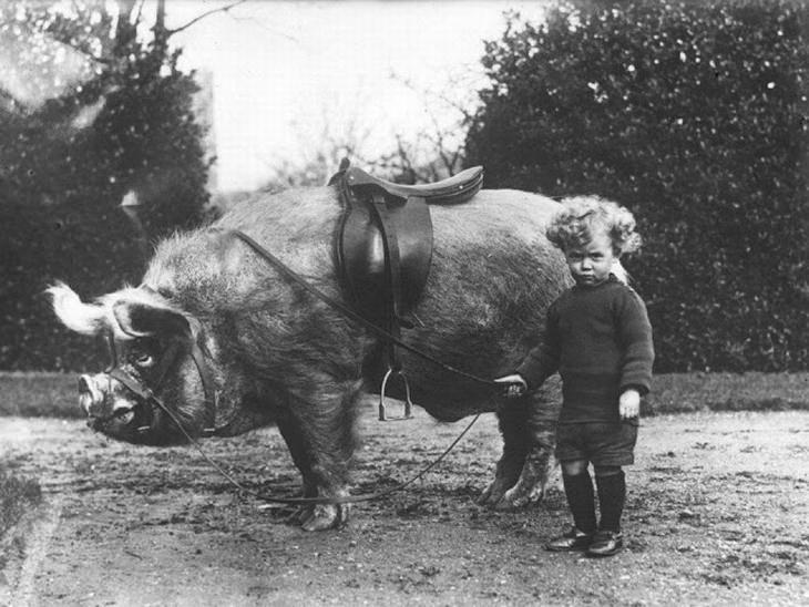 imágenes históricas sorprendentes
