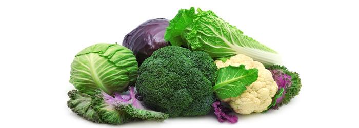 alimentos actividad tiroides