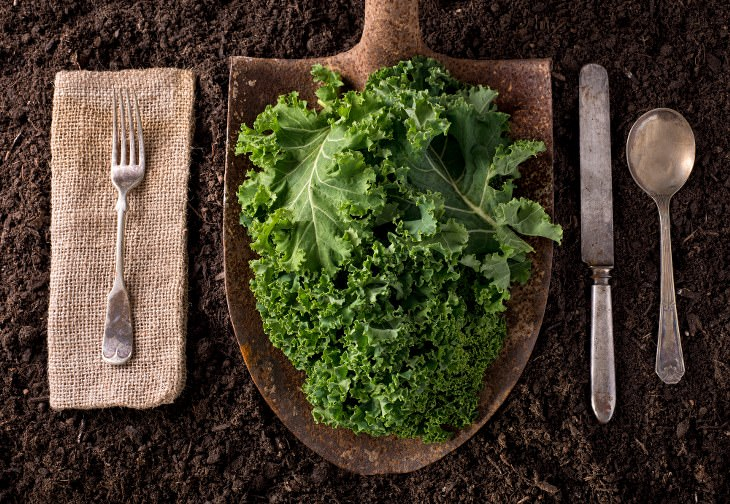 Col Kale beneficios