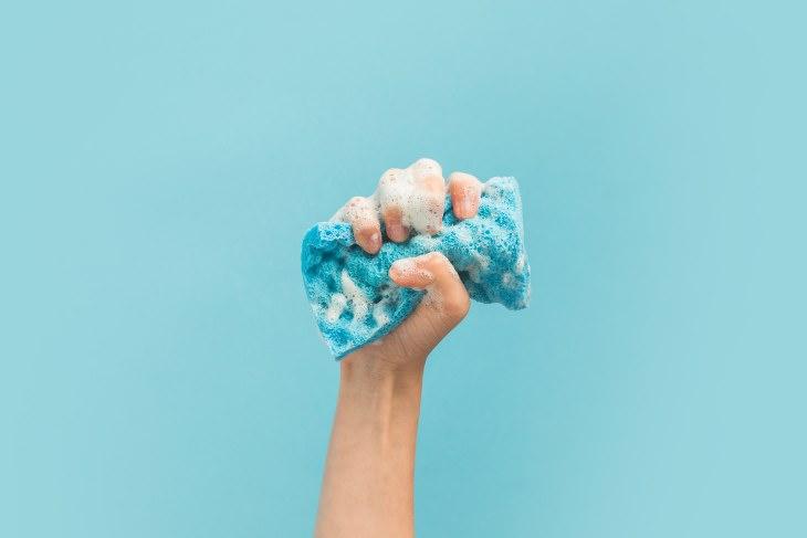 gérmenes esponja de cocina