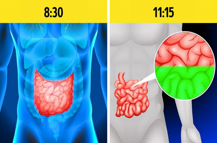 señales úlcera estomacal
