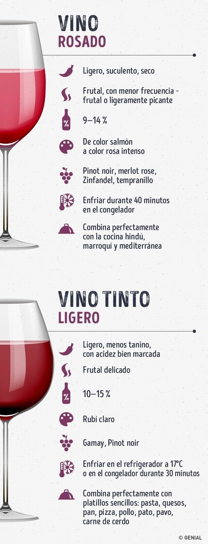 guía de vinos especialista