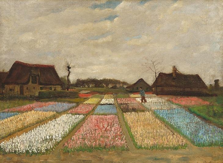 Campos de bulbos Vang Gogh