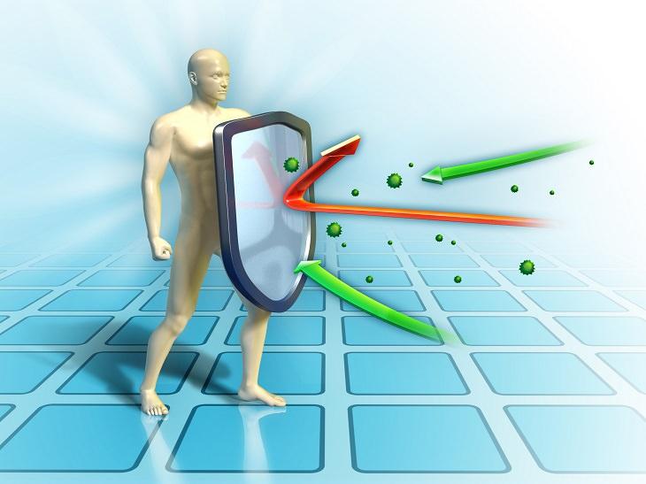 beneficios Ginseng sistema inmunitario