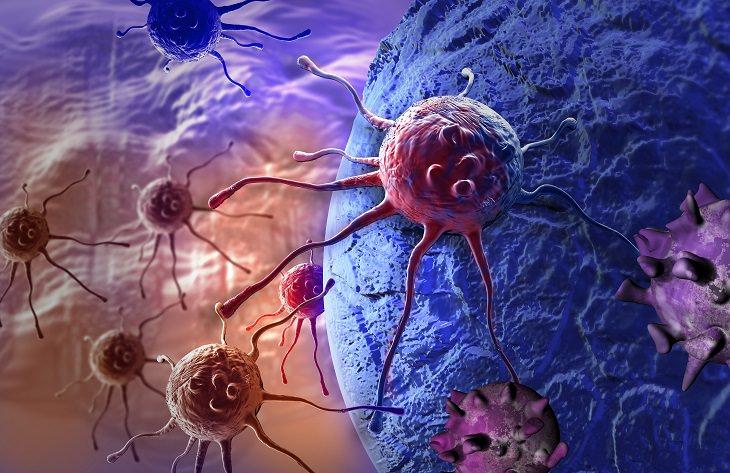 beneficios Ginseng previene cáncer