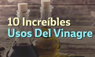 7 posts usos vinagre