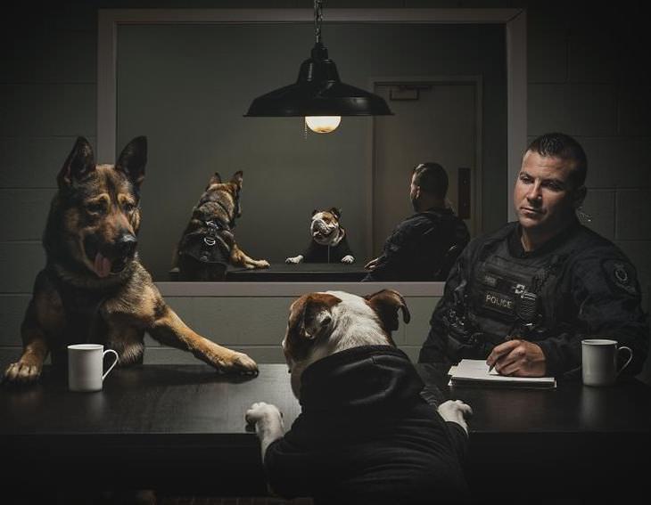 Perro policía interrogando a otro perro