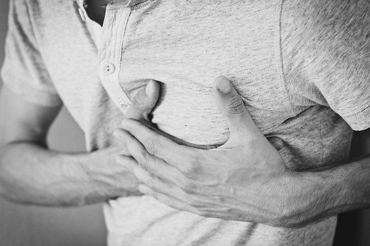 Investigación Médica Corazón 3D