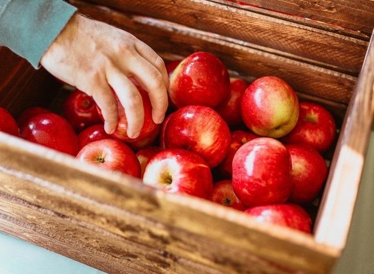 Datos Importantes Alimentos Fruta