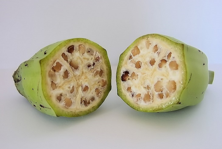 Wild Versions of Fruit and Veggies