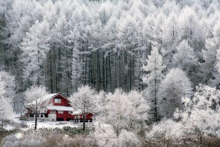 japon es hermoso en invierno