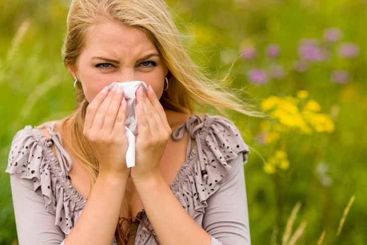 ¿Alergias de Primavera? Esto Es Lo Que Necesitas Hacer