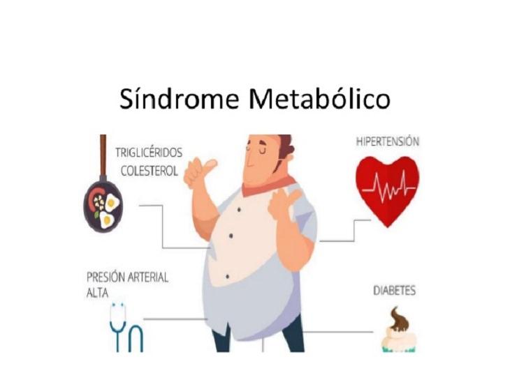 guía síndrome metabólico