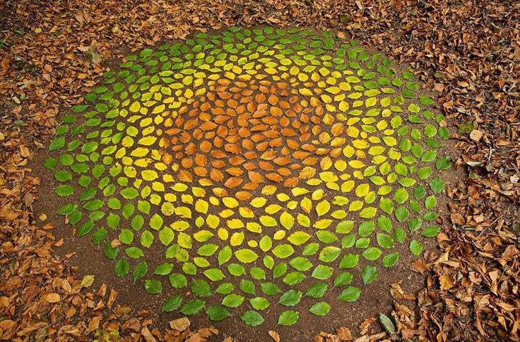 arte hecho con elementos naturales