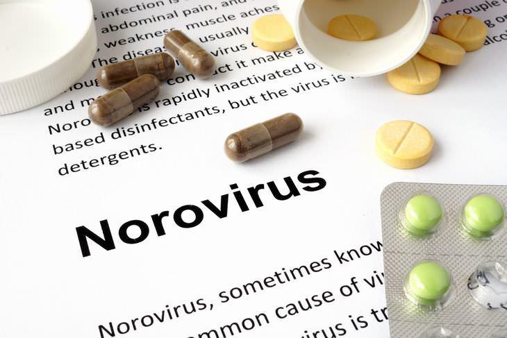 Los Peligros Del Norovirus