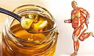 7 artículos sobre la miel