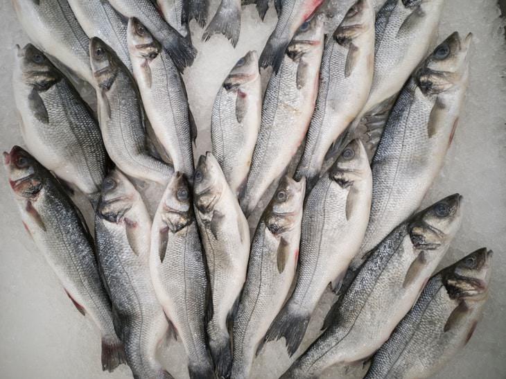 niveles altos metilmercurio en algunos pescados